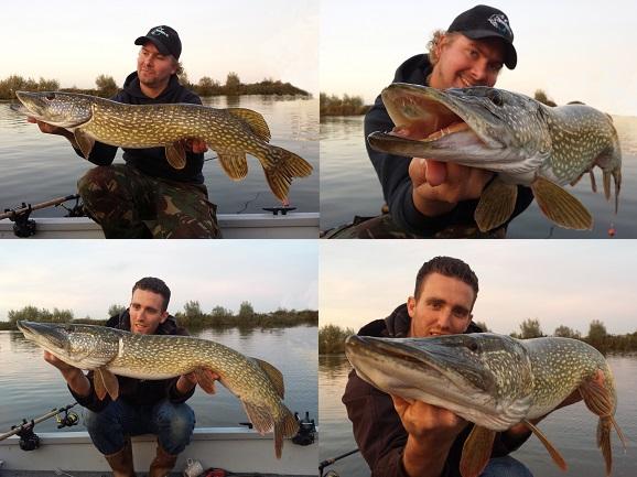 Beide nog een mooie vis om deze visrijke dag mee af te sluiten...