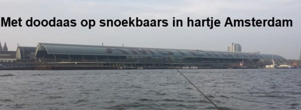 Met dood aas op snoekbaars in hartje Amsterdam