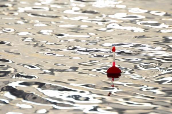 Patrick van Asselt www.doodaas.nl - dobber