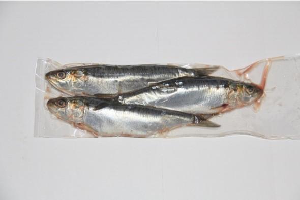 Sardines thuisbezorgd...